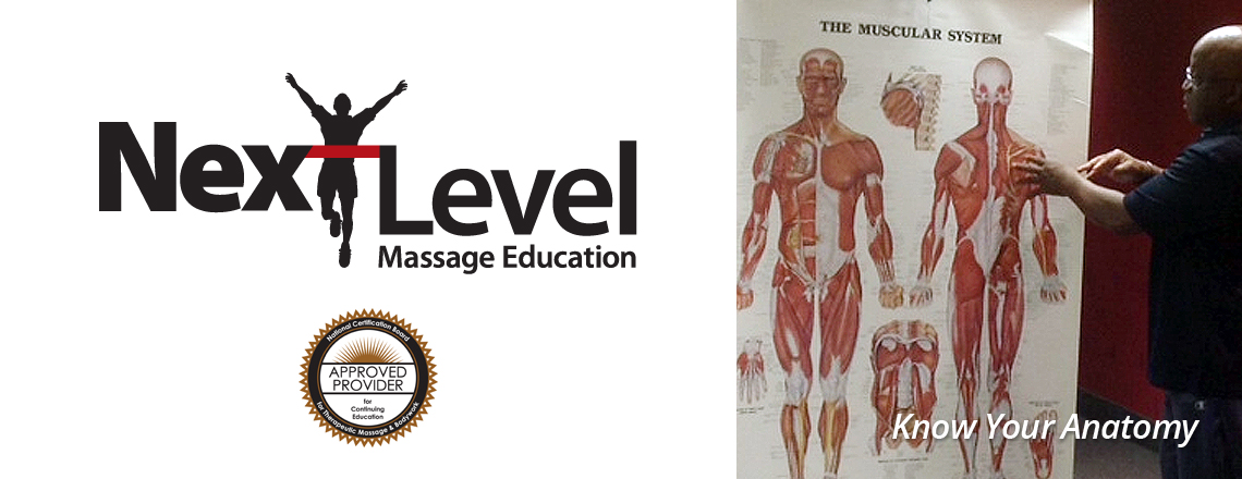 Next Level Massage Education